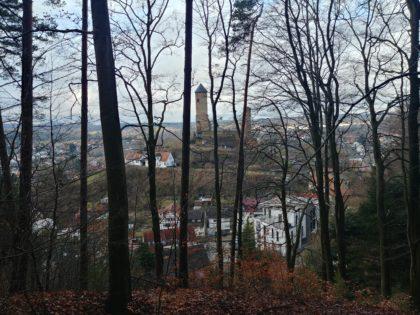 Blick zwischen den Bäumen hindurch auf die nahe Burg