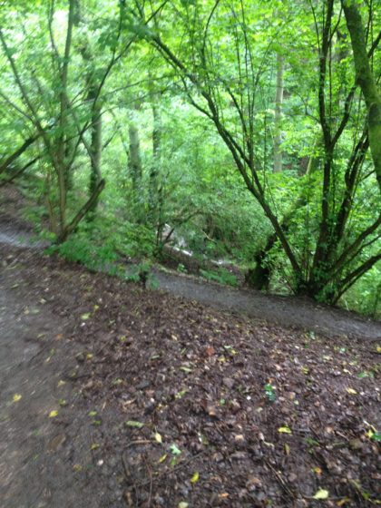 Nahe-Felsen-Weg Wanderblog