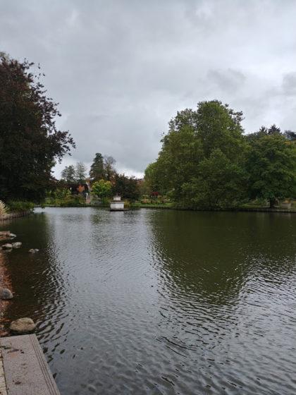 Über drei Jahre später - wieder im Rosengarten bei strömendem Regen