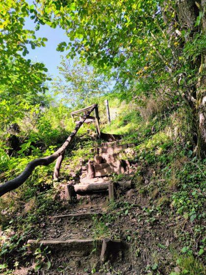 Die letzten Meter hinauf zum Schaumbergplateau