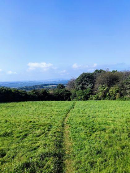 Der Weg führt quer über eine Weide