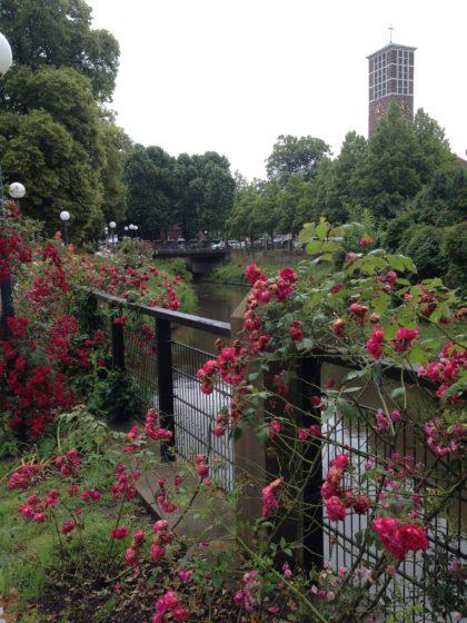 Auf dem Weg zum Rosengarten