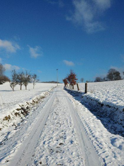Sonne + Schnee = Wohlbefinden