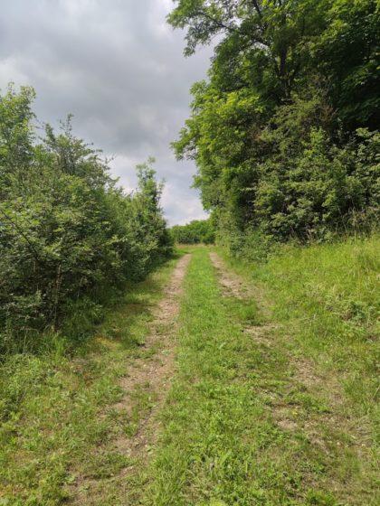 Auf den ersten zwei Kilometern führt der Weg fast nur bergauf