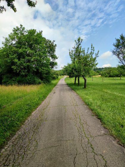 Schöner Weg, immer noch bergauf