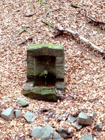 Ein kleiner Brunnen