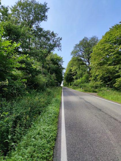 Auch eine Landstraße muss mal wieder überquert werden