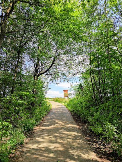 Asphaltweg zum Fledermauskopf