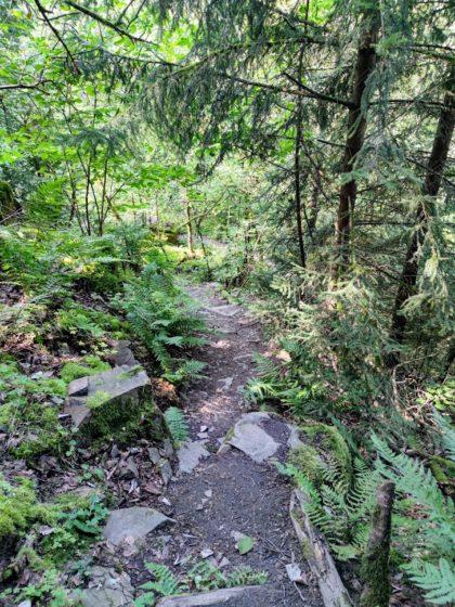 Ein holpriger und steiniger Pfad ca. 4 km vor dem Ziel