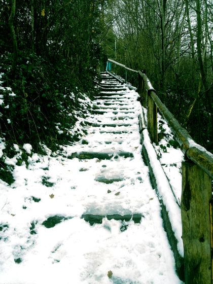 Der Schauinslandweg - bei jedem Schritt muss ich auf vereiste Stellen aufpassen