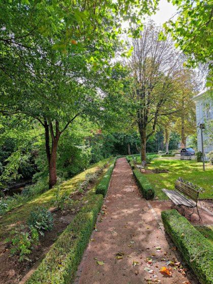 Im Barock-Rosengarten