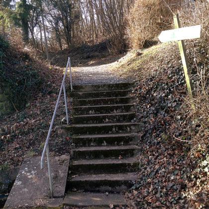 Hier in der Nähe gibt es einen Skywalk, aber den muss ich wegen Höhenangst auslassen