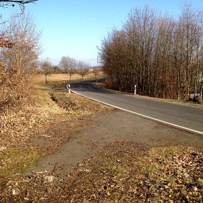 Und wieder einmal muss ich eine wenig befahrene Landstraße überqueren