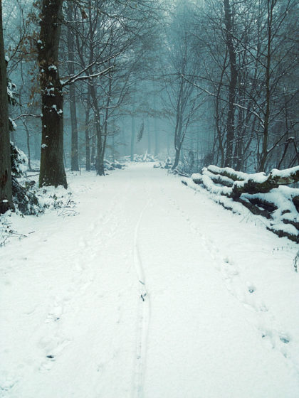 Wieder zurück auf dem Schneepfad