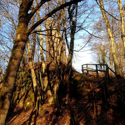 Die Ruine Brunkenstein