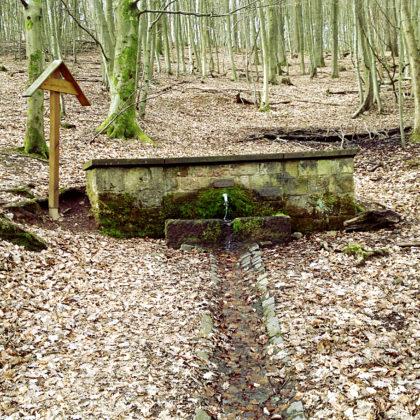 Erster Brunnen