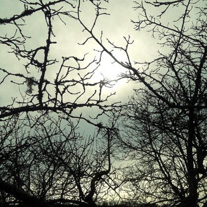 Wo ist die Sonne?