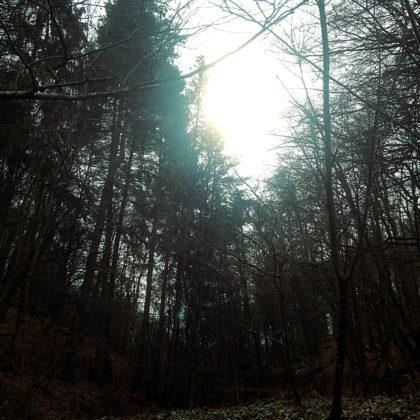 Endwinteratmosphäre
