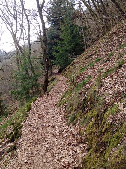 Hinein in den Steilhang