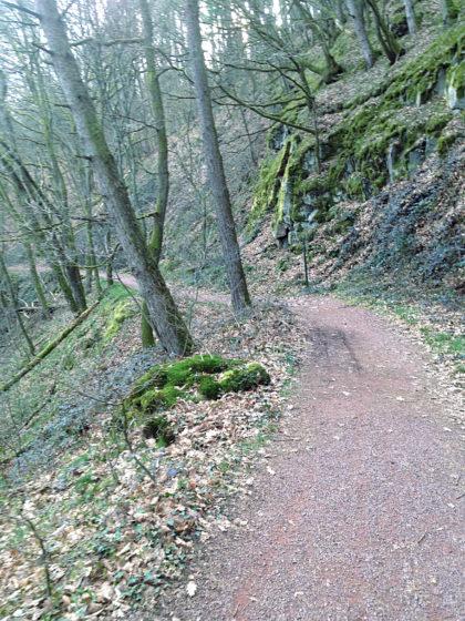 Hinab ins Steinbachtal
