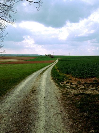 Noch etwa 4 Kilometer bis Erlenbach