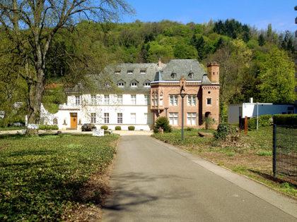 Schloss Fellenberg