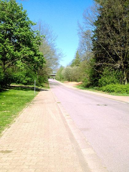 Straße zum Wolfspark