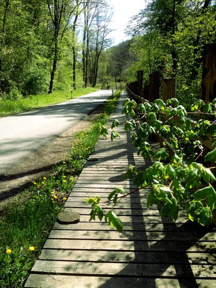 Holzsteg unmittelbar an einer Landstraße