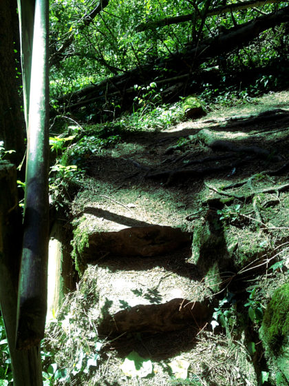 Die ersten von vielen Stufen nach oben
