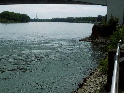 Worms liegt am Rhein q.e.d.