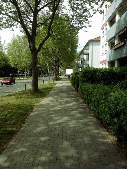 Auf dem Zuweg zum Rheinterrassenweg