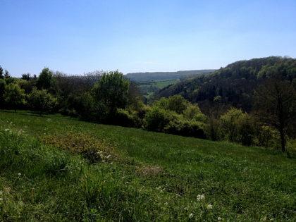 ...über Wiesen und Hügel