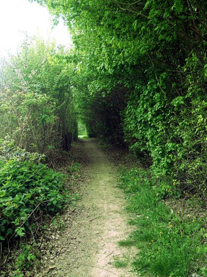 Noch ein paar hundert Meter bis zum Garten der Sinne