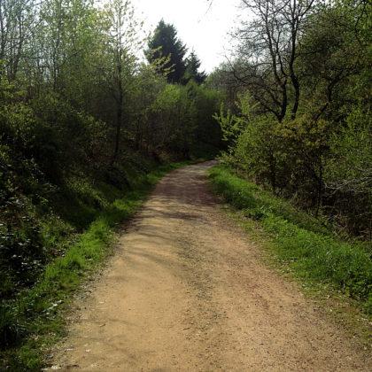 Die letzten hundert Meter des Wolfsweges