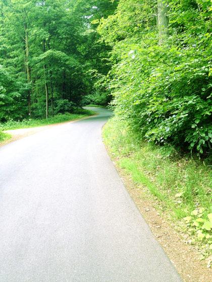 Radweg nach Kleinostheim
