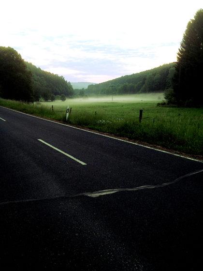 Der nächste Morgen. Nebel über den Wiesen.