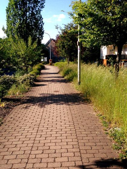 Wohngebiet in Schneppenbach