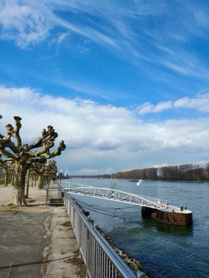 Rheinufer Worms im März 2018