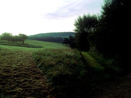 Ein wunderbar heller Morgen zieht herauf - und ich gehe gleich mal in die falsche Richtung