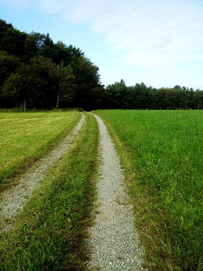 Von nun an ist die Wanderung ein einziges Entspannungsmantra