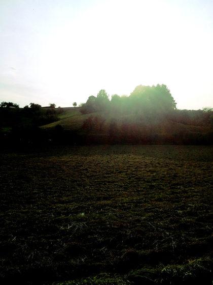 Die Sonne sinkt