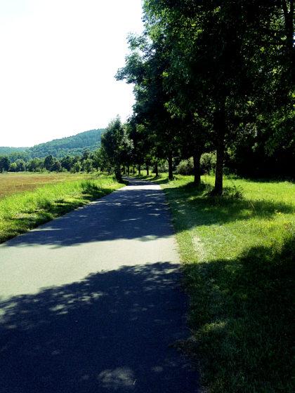 Schattenpfad