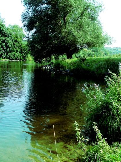 Mal wieder Verharren am Fluss