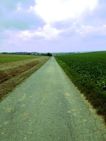 Richtung Fuchsstadt