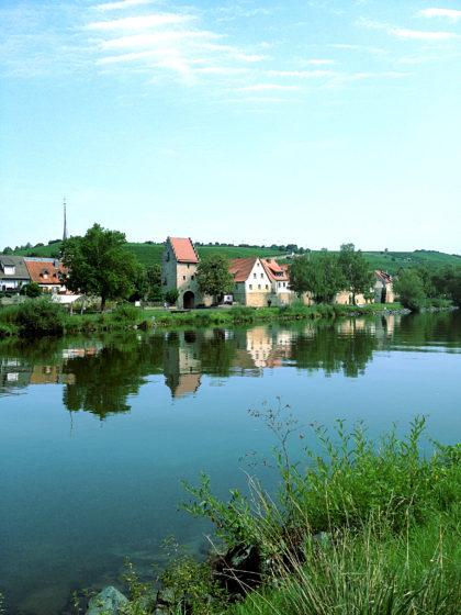 Frickenhausen auf dem gegenüberliegenden Mainufer