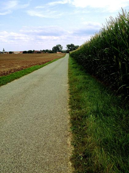 Auf den 168-Einwohner-Ort Herchsheim zu...