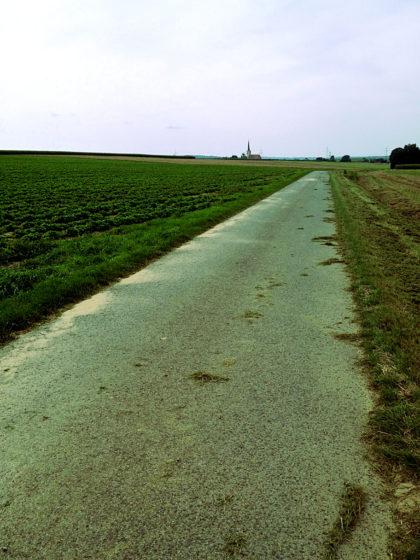 Nicht mehr weit bis Allersheim, 350 Einwohner