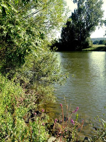 Noch einmal der Fluss
