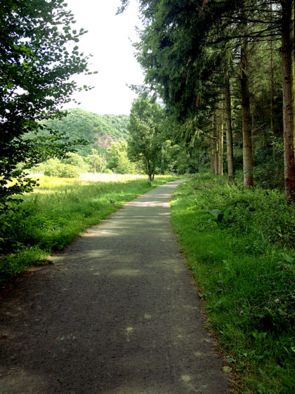 An der Nahe entlang Richtung Martinstein