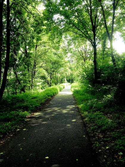 Immer noch auf dem Nahe-Radweg bei tollem Sommerwetter